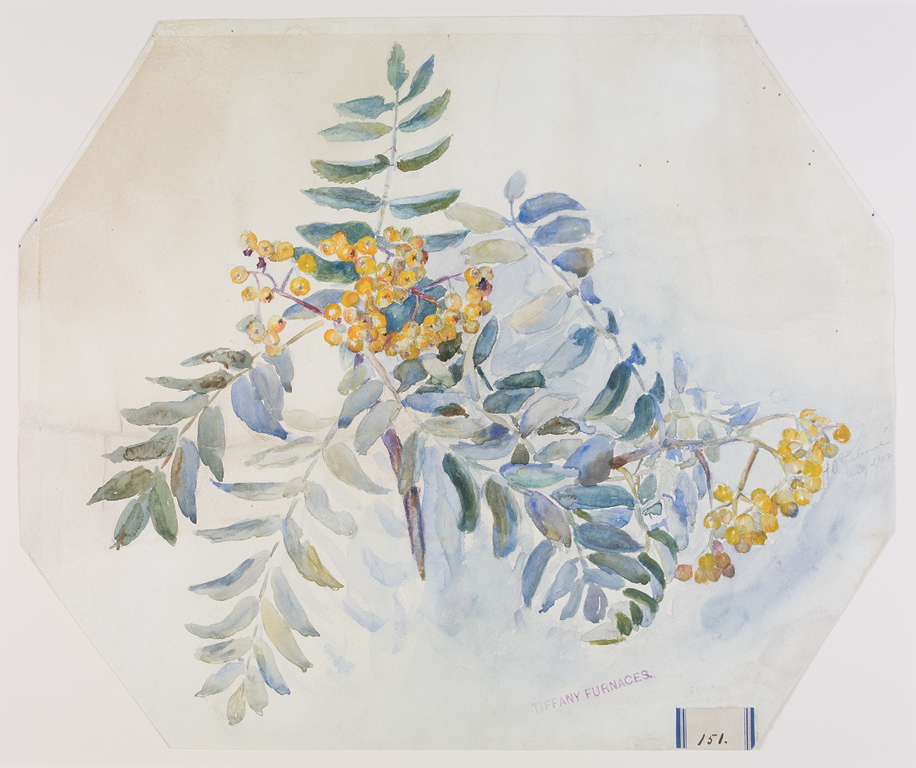 Branches Bearing Yellow Berries design drawing for Tiffany Furnaces by Alice C. Gouvy and Lillian A. Palmié