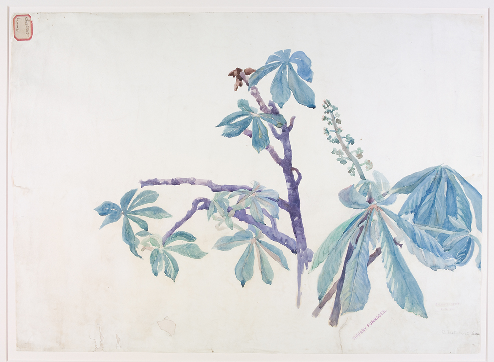 Chestnut Leaves design drawing for Tiffany Furnaces by Alice C. Gouvy