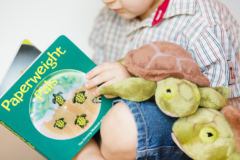 Boy holding Paperweight Pals and a stuffed plush sea turtle