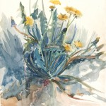 Dandelion plant 95 by Alice Gouvy. Watercolor on paper; 54 x 36 cm. Bib ID 89006.