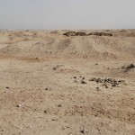 The area of vitrified mud-brick on surface at M50.15-16 and the ruins of the houses, looking north towards the house of Ranefer. Photo credit: Anna Hodgkinson