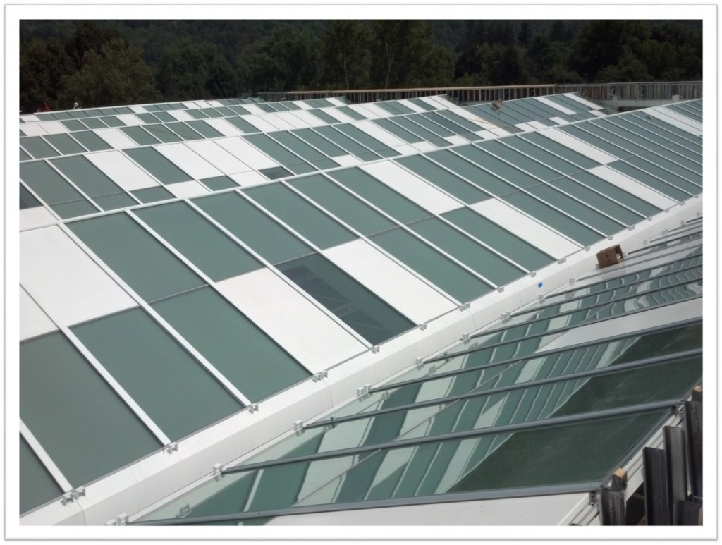 The roof is a sophisticated system of opaque, translucent and transparent panels that will allow natural light on the artworks.