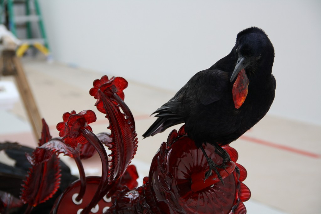 A taxidermied crow from Corroña (Carrion), by Javier Pérez, is installed in the gallery.