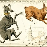 A page of the 19th-century celestial atlas that inspired Kiki Smith. Courtesy of Adler Planetarium, Chicago, Illinois.