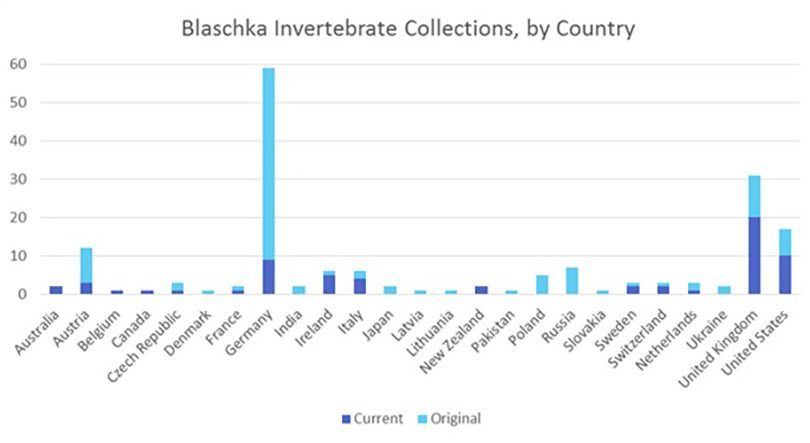 Blaschka Invertebrate Collections by Country