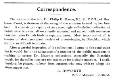 "Announcement of the sale of 300 Blaschka invertebrate models, ""now so difficult to obtain,"" by the widow of Dr. Philip B. Mason (Museums Journal, Vol 4-5, page 215, December 1904). Mrs. Mason eventually sold her husband's models to the Glasgow Museums in 1909 for £275."