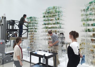 The Collections & Exhibitions team clean the elements of Forest Glass.