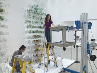 The Collections & Exhibitions team re-assemble Forest Glass after cleaning.