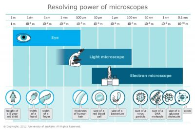 Resolving power of microscopes.