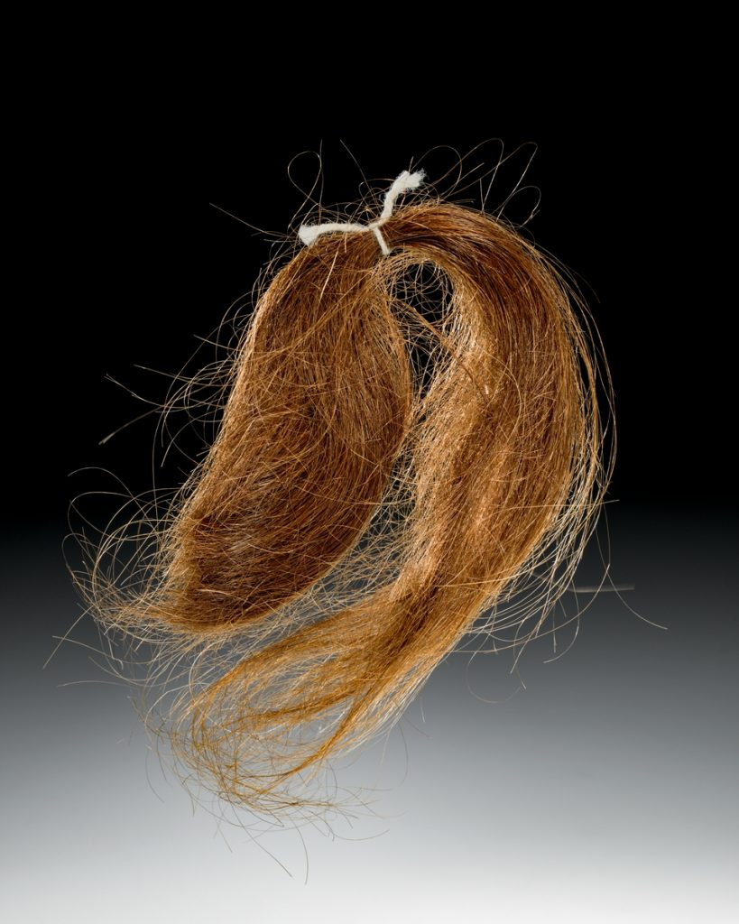 Sample of Fiberglass Strands/Hair