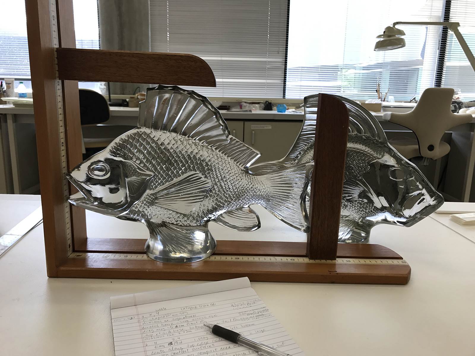 The glass fish are measured and damages are recorded as part of the examination.