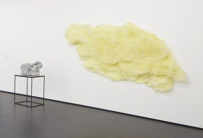 Sarah Briland, Problematica: Bubble Wrap Fossil and Foam Rock.